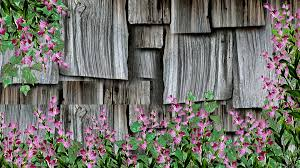 Firefox Persona Farm Barn Shakes Flowers Country Rustic Cedar Flower Wallpaper For Windows 7 Free Download