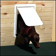 Doggie Door For Patio Door Canada by Charming Doggie Door Lowes Collection Also Dog Flap Replacement