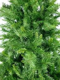 Fiber Optic Christmas Trees Canada by Eastern Pine Christmas Tree 3m Christmas Trees The Christmas