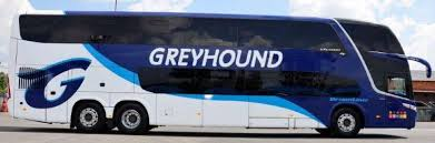 Does Greyhound Bus Have Bathrooms by Fleet Greyhound