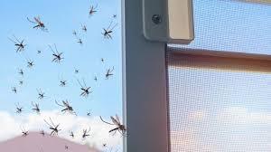 wissenschaftler will mücken im schlafzimmer mit laserkanone