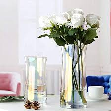 de orveyaanxla glasvase dekoration wohnzimmer