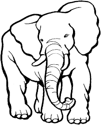 Zoo Animal Coloring Pages Elephant
