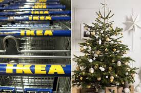 6ft Christmas Tree Nz by Ikea Are Selling Real 6 Foot Christmas Trees For 5 But They U0027re