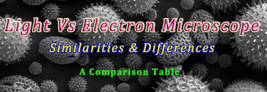 Difference between Light & Electron Microscope