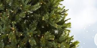9ft Christmas Tree Walmart Canada by Shop Christmas Trees At Lowes Com