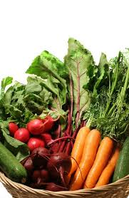 basket with a variety of farm fresh vegetables just picked from