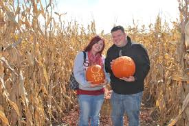 Siegels Pumpkin Farm by Gallery The Barn At Cottonwood