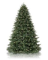 Fraser Fir Artificial Christmas Tree Sale by Best 25 Artificial Christmas Trees Uk Ideas On Pinterest