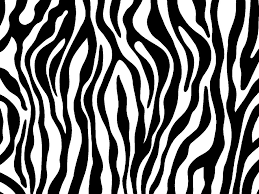 Zebra Print Coloring Pages Id 104657 Uncategorized