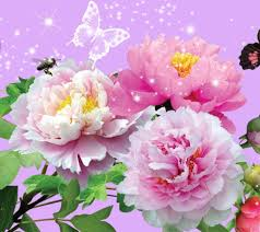 Wallpaper Of Flower Mobile Phone Background Flowers For High Resolution Pc