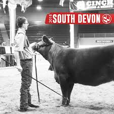 National Western Stock Show | 2018 South Devon Show Schedule | The ... 1021cattle6ajpg Purple Reign Cattle Company Online Sale The Pulse February 2017 Texas Longhorn Trails Magazine By A Good Place To Be Cow At Fort Worth Stock Show Animals Are Commercial And Registered Ozarks Farm Neighbor Newspaper Cattlemen Opmistic About Resumed Beef Exports To China News Blog Lautner Farms Experience The Value Best Of Southwest Shootout Overall Market Burke Hidin In Sand Steer November 2015 Graham Livestock Auction Sanctioned Shows Ijbba Iowa Junior Beef Breeds Association