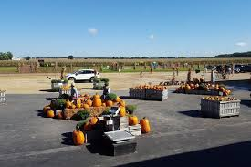 Moriarty Pumpkin Patch by Best Corn Mazes And Pumpkin Patches For Fall Fun Cheapism