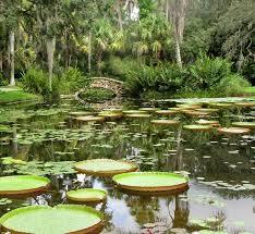 Top Mckee Botanical Garden Decoration