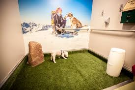 Denver International Airport Murals In Order pets denver international airport