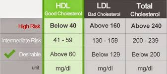 hdl cholesterol range normal aveley health what are the healthy cholesterol levels