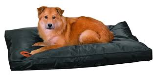 Kong Chew Resistant Dog Bed by 100 Kong Chew Resistant Dog Bed Kong Cloud Soft Inflatable