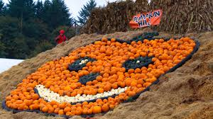 Ohio Pumpkin Festivals 2017 by Best Pumpkin Patches Near Portland