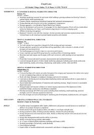 Digital Marketing Director Resume | Summary For Resume ... Managing Director Resume Samples Velvet Jobs Top 8 Marketing And Sales Director Resume Samples Sales Executive Digital Marketing Summary For Manager Examples Templates Key Skills Regional Sample By Hiration Professional Intertional To Managing Sample Colonarsd7org 11 Amazing Management Livecareer 033 Template Ideas Business Plan Product Guide Small X12