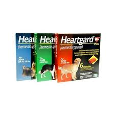 heartgard for cats heartgard plus for dogs our pets pharmacy