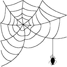 Spider Web Clipart Transparent