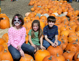 Flower Mound Pumpkin Patch Flower Mound Tx by 2014 Southlake Area Pumpkin Patch Guide Southlake Style