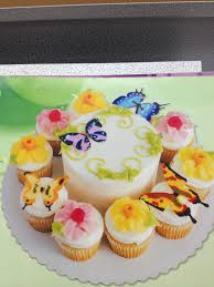 SAMs Club Butterfly Cake With Cupcakes