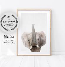 Baby Elephant Print, Nursery Wall Art, Safari Animal Decor ... Wild About Jesus Safari Stuffed Animals Griecos Cafree Inn Coupons Tpg Dealer Code Discount Intertional Delight Printable Proflowers Republic Hyena Plush Animal Toy Gifts For Kids Cuddlekins 12 Win A Free Stuffed Animal Safaris Super Summer Giveaway Week 4 Simon Says Stamp Coupon 2018 Uk Magazine Freebies Dell Outlet Uk Prime Now Existing Customer Tiger Tanya Polette Glasses Test Your Intolerance How To Build A Home Stuffed Animal