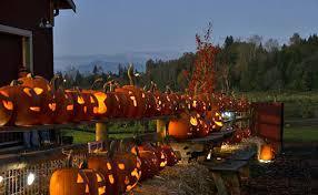Pumpkin Patch Dixon Il by 17 Fun Filled Pumpkin Picking Experiences Across America