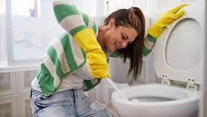 toilette putzen hausmittel und tipps für die wc reinigung