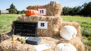 Bishops Pumpkin Patch Wheatland Ca by Story Archives Sacramento Valley