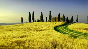 Tuscany Wallpaper 69 Images