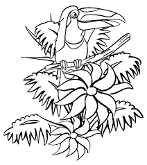Click To See Printable Version Of Toucan In The Jungle Coloring Page
