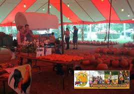Pumpkin Patch Miami Lakes by The Pumpkin Patch Miami Florida Home The Pumpkin Patch Miami