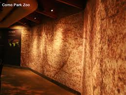 Tectum Deck Bulb Tees by Tectum Acoustical Wall Panel Painted To Match The Walls At The Zoo