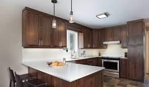 armoire de cuisine stratifié polyester et mélamine avanti prémoulé