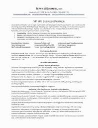 49 Lovely Resume Summary Samples For It Professionals