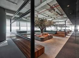 bureau office olive tree takes centre stage in minimalist industrial office by