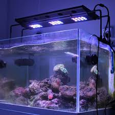 eclairage led pour aquarium eau de mer aquapro plus a001 t 108w re 36 leds hautes puissances