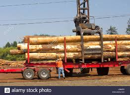 Grapple Truck Stock Photos & Grapple Truck Stock Images - Alamy Kenworthserco 8500 Grapple Truck 4 Trucks In Covington Tn For Sale Used On Buyllsearch 1986 Chevrolet Grapple Truck Vinsn1gbm7d1f5gv119560 Gas Engine Truck Backhoes And More Pinterest 1999 Intertional Hood Truckalong 2006 Sterling Acterra Tandem Axle Log Or Grapple Log Minnesota Railroad For Aspen Equipment Peterbilt 2006mackgrapple Trucksforsagrappletw1160238tk Parts Loglift X53x43grapples Hungary 2017 Grapples Sale 2018freightlinergrapple Trucksforsagrappletw1170169gt