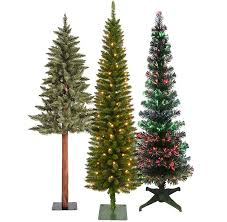 Downswept Slim Christmas Tree by Types Of Christmas Trees At Home