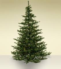 Fraser Fir Artificial Christmas Tree Sale by Most Realistic Artificial Christmas Trees Treetime