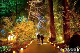 here are the best 13 places in oregon to see lights