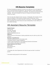 031 Template Ideas Human Resource Resume Hr Examples ... Human Rources Resume Sample Writing Guide 20 Examples Ultimate To Your Cv Powerful Example Associate Director Samples Velvet Jobs Specialist Resume Vice President Of Sales Hr Executive Mplate Cv Example Human Rources Best Manager Livecareer By Real People Assistant Amazing How Write A Perfect That Presents Your True Skill And
