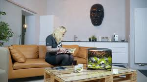Aquascaping Book's For New Aquascapers From Oliver Knott - YouTube Aquascaping Artist Oliver Knott Scapingaquarium Pinterest Schwimmende Stein Steine Im Aquarium By Knott Youtube Aquascapi Sequa Interzoo 2012 Feat Chris Lukhaup Live Part 3 The Island Aquascape Step Aquariology With At The Koelle Zoo Heidelberg New Project Photo Editor Online And Editor Made Teil 1 Inspiration Tips Tricks Love Aquascaping Octopus Aquarium Via Aquac1ubnet