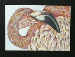 Melody Our Store Manager Created These Beautiful Colored Postcards From The Animal Kingdom Coloring Postcard Book 30 Page Is By Best Selling