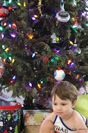 Publix Christmas Trees 2014 by What To Do When Your Christmas Tree Dies Before Christmas Eat