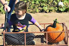 North Lawrence Pumpkin Patch by Sunny Side Pumpkin Patch Kansas Haunted Houses