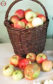 faire un jus de fruits frais maison ma du verger