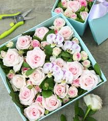 33 best flowers in a box images on Pinterest